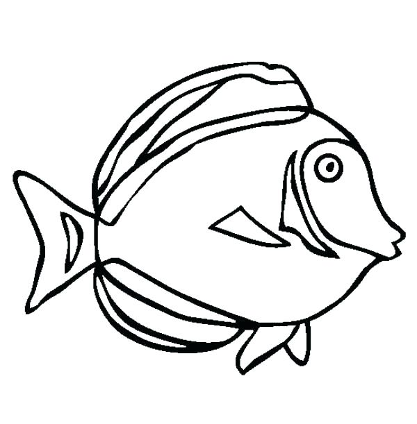600x611 Sea Animal Coloring Pages Underwater Coloring Page Underwater