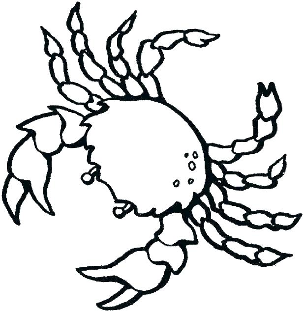 618x635 Sea Life Coloring Sea Creatures Coloring Pages Sea Creature