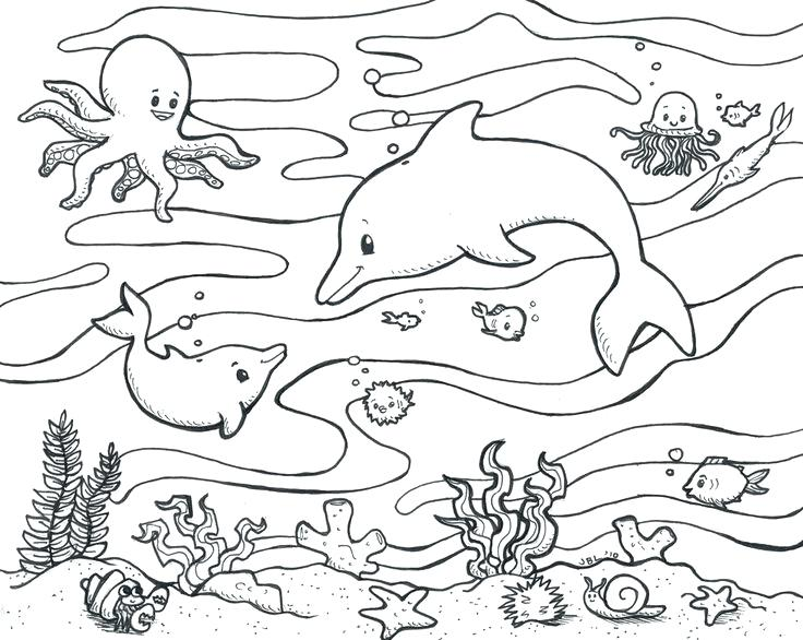 736x586 Coral Reef Coloring Page Terrific Underwater Coloring Pages