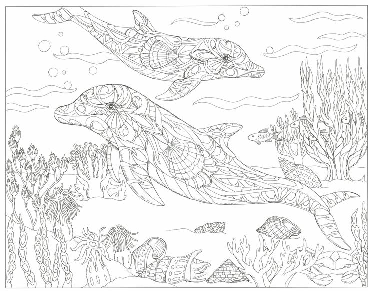 736x581 Best Coloring Pages To Print