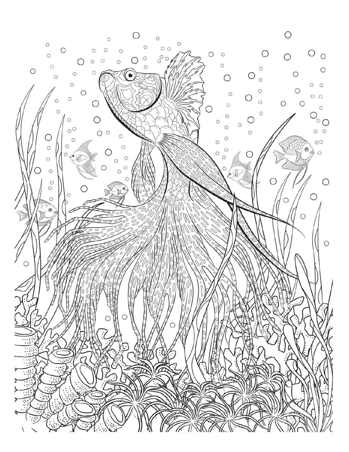 1156x1496 Oceana Adult Coloring, Coloring Books And Underwater