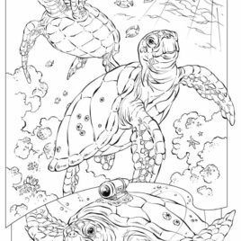268x268 Underwater Coloring Pages For Adults Archives