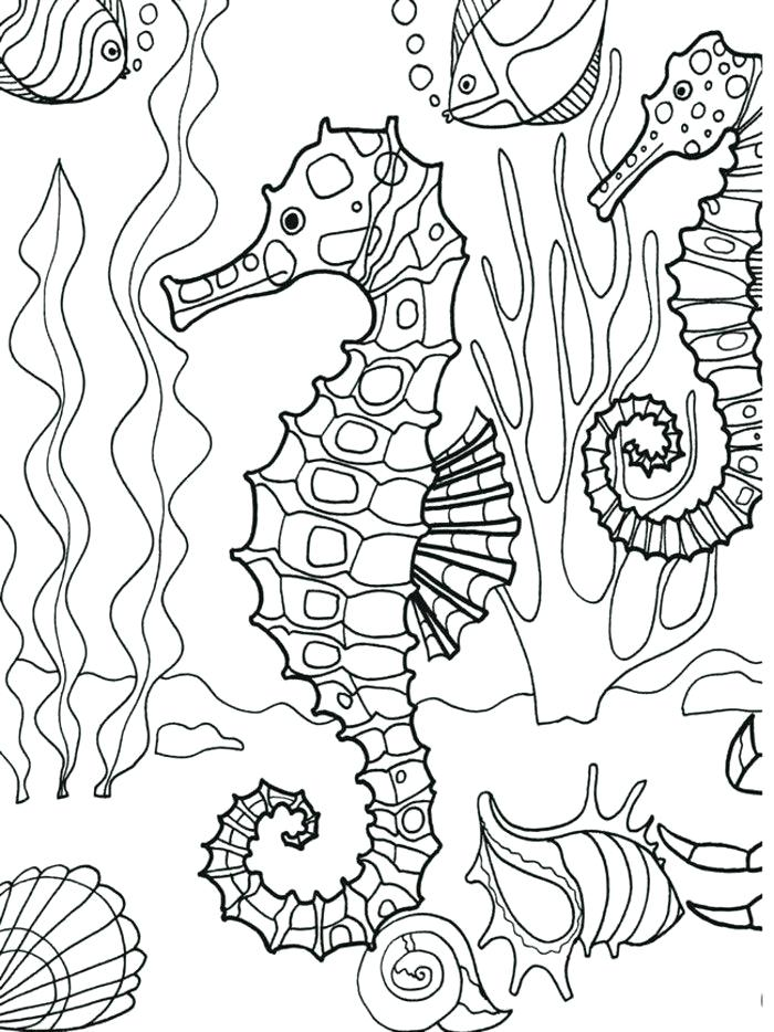 700x934 Underwater Seahorse Coloring Page Adult Underwater Coloring Pages