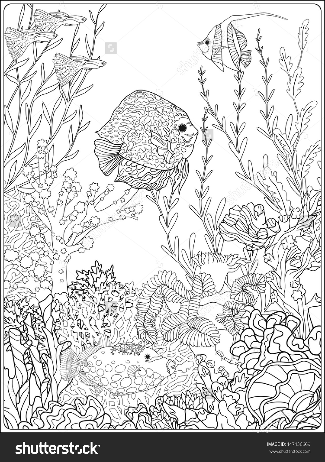 1127x1600 Adult Coloring Book Coloring Page With Underwater World Coral