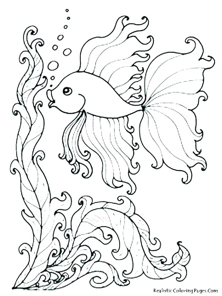736x981 Underwater Coloring Pages