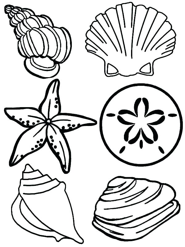600x800 Underwater Plants Coloring Pages Underwater Coloring Page