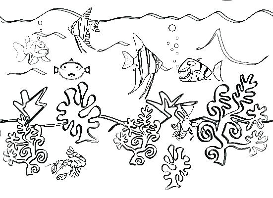 551x400 Underwater Coloring Page Water Animals Coloring Pages Underwater