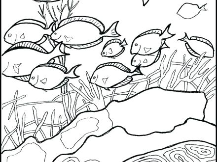 440x330 Underwater Coloring Pages Wonderful Underwater Coloring Pages