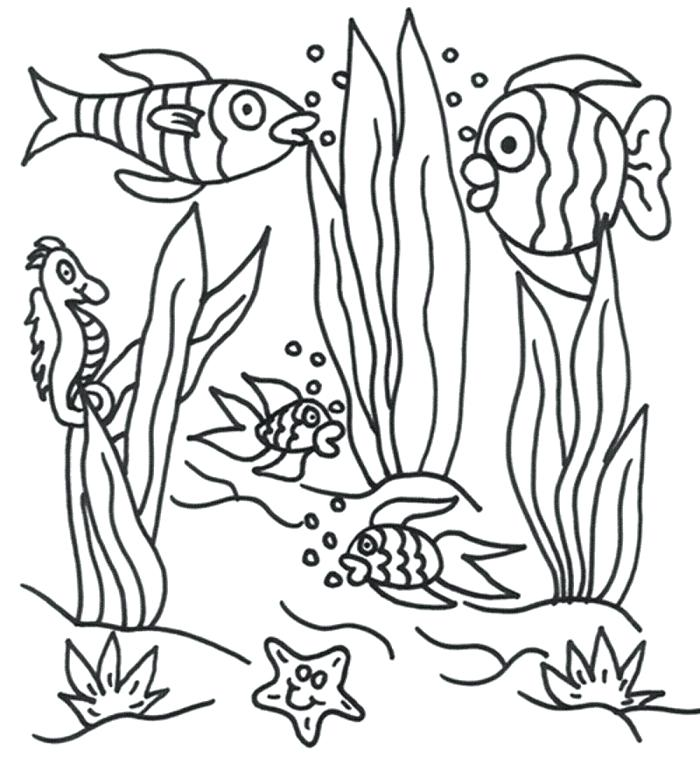 700x771 Ocean Scene Coloring Page Excellent Underwater Scene Coloring