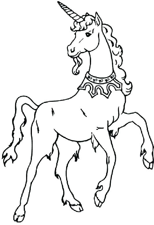 531x778 Cute Unicorn Coloring Pages X Cute Unicorn Coloring Sheets Cute