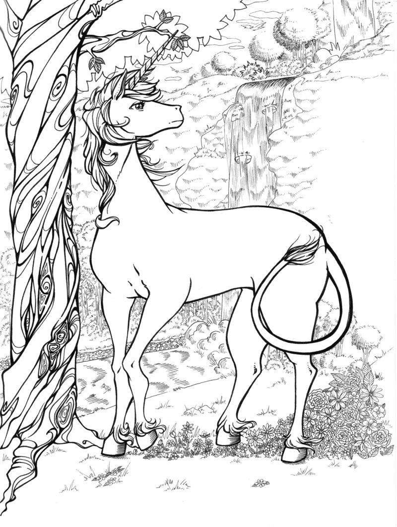 800x1062 The Last Unicorn Coloring Pages For Adults