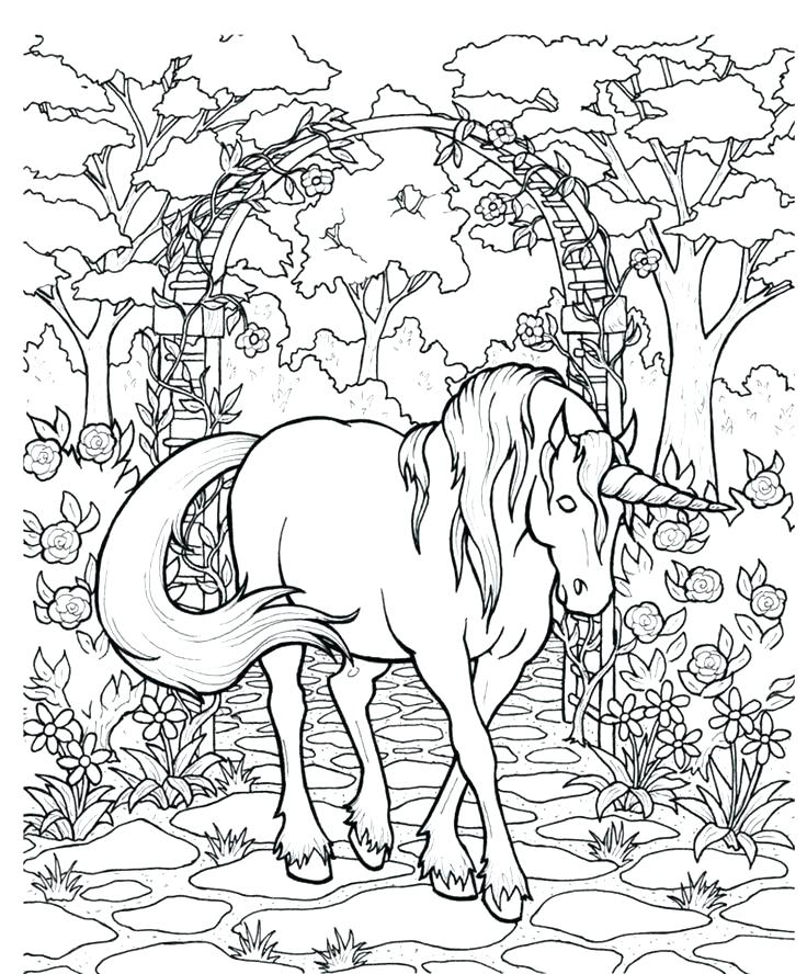 736x888 Pegasus Coloring Pages Coloring Pages Unicorn And Coloring Pages