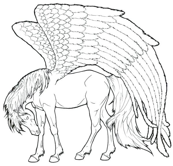 600x576 Top Coloring Pages Fee Unicorn Pictures For Adult Top Coloring