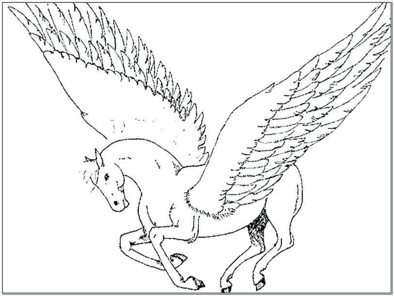 813x610 Unicorn With Wings Coloring Pages Coloring Pages Pictures Unicorn