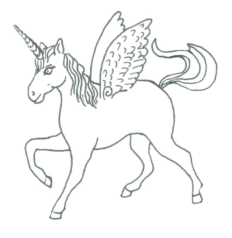 763x783 Unicorn With Wings Coloring Pages Unicorn With Wings Coloring