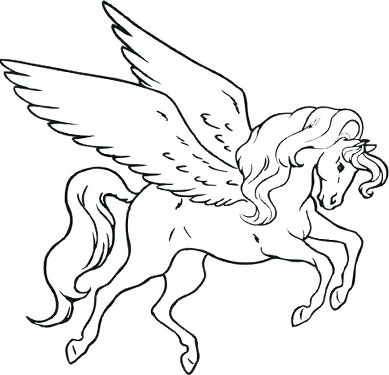 795x768 Unicorn With Wings Coloring Pages Unicorn Wings Coloring Pages