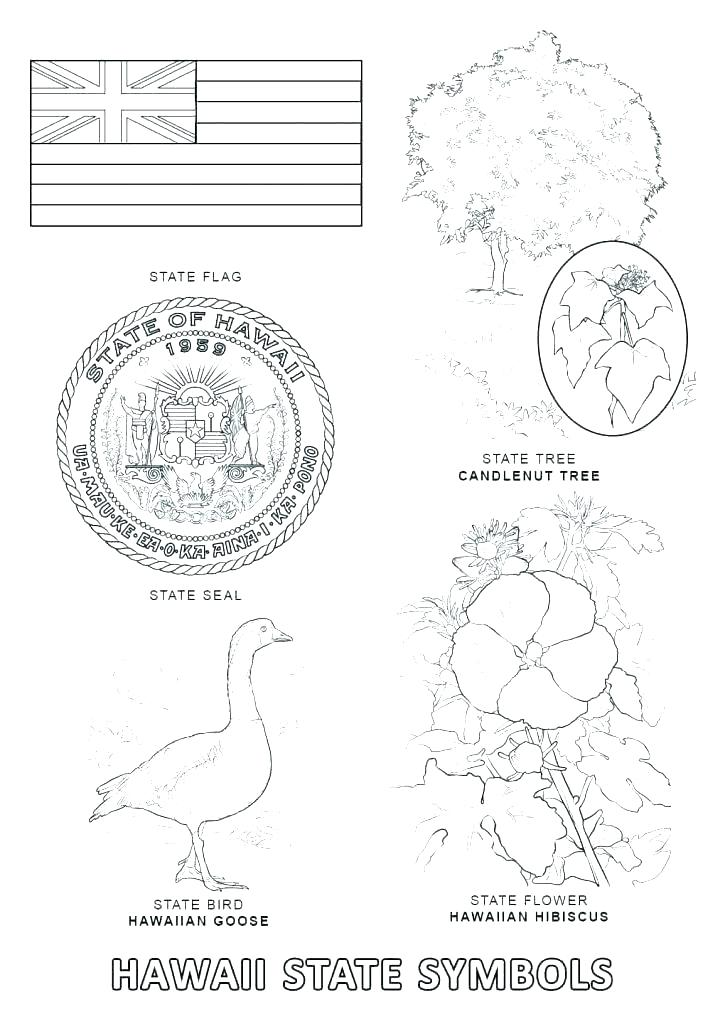 725x1024 United States Map Coloring Page United States Map Coloring Page