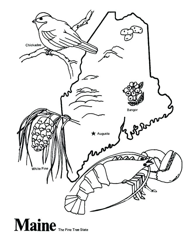 670x820 United States Coloring Page States Coloring Pages United States