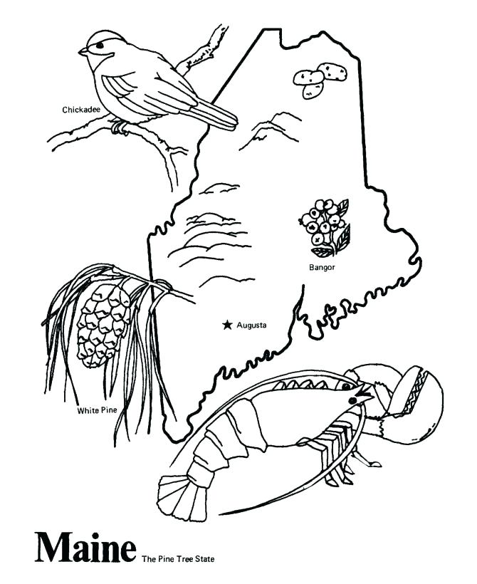 670x820 States Coloring Pages Excellent United States Coloring Page Online