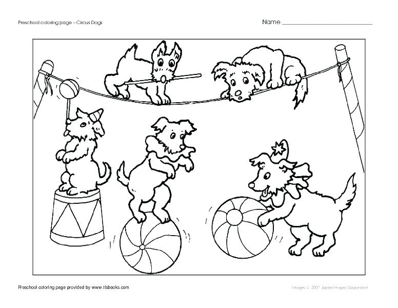 776x600 Online Coloring Pages Valentines Day School Page Circus Dogs K