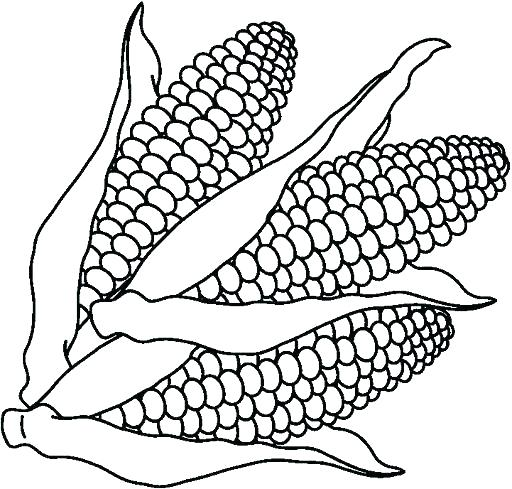 Vegetable Coloring Pages Printable At Getdrawings Com Free For