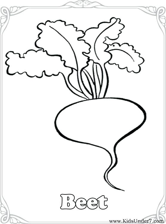 556x749 Vegetable Coloring Page Amazing Vegetable Coloring Sheets