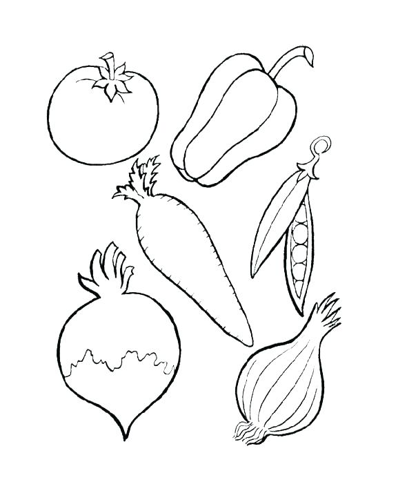 590x711 Printable Vegetable Coloring Pages Vegetable Garden Coloring Pages