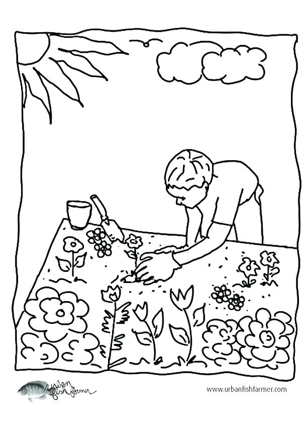 603x848 Vegetable Garden Coloring Pages Garden Coloring Pages Garden