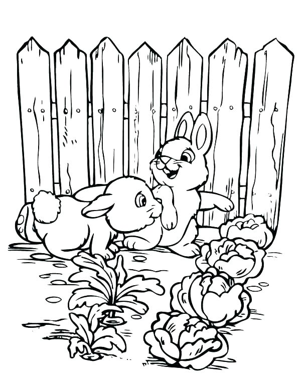 600x776 Vegetable Garden Coloring Pages Garden Coloring Pictures Coloring