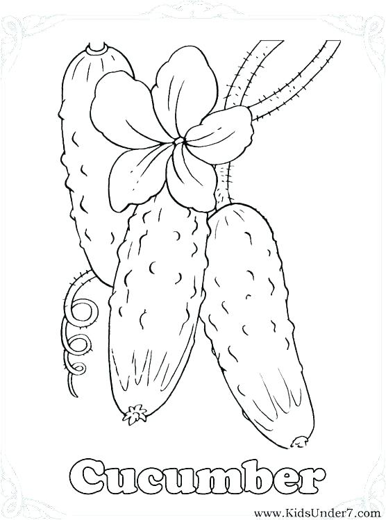 556x749 Vegetable Coloring Pages Vegetable Coloring Pages Vegetable