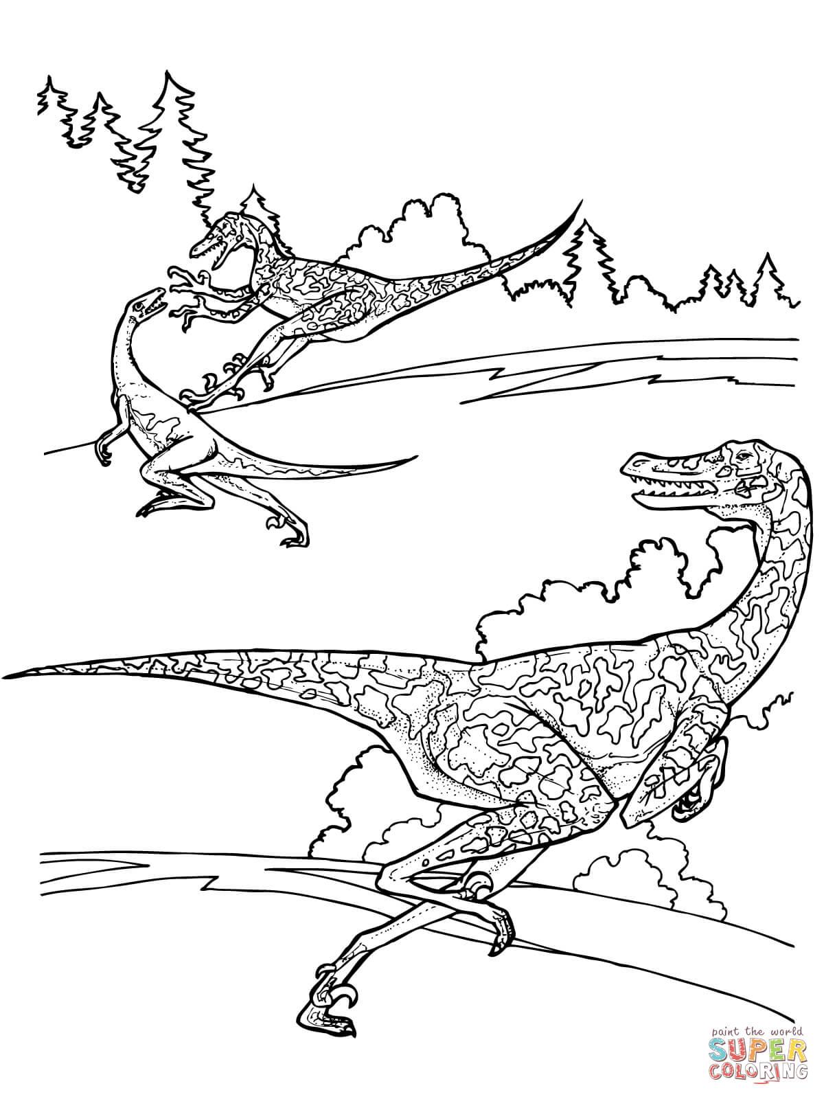 1200x1600 Velociraptor Coloring Page