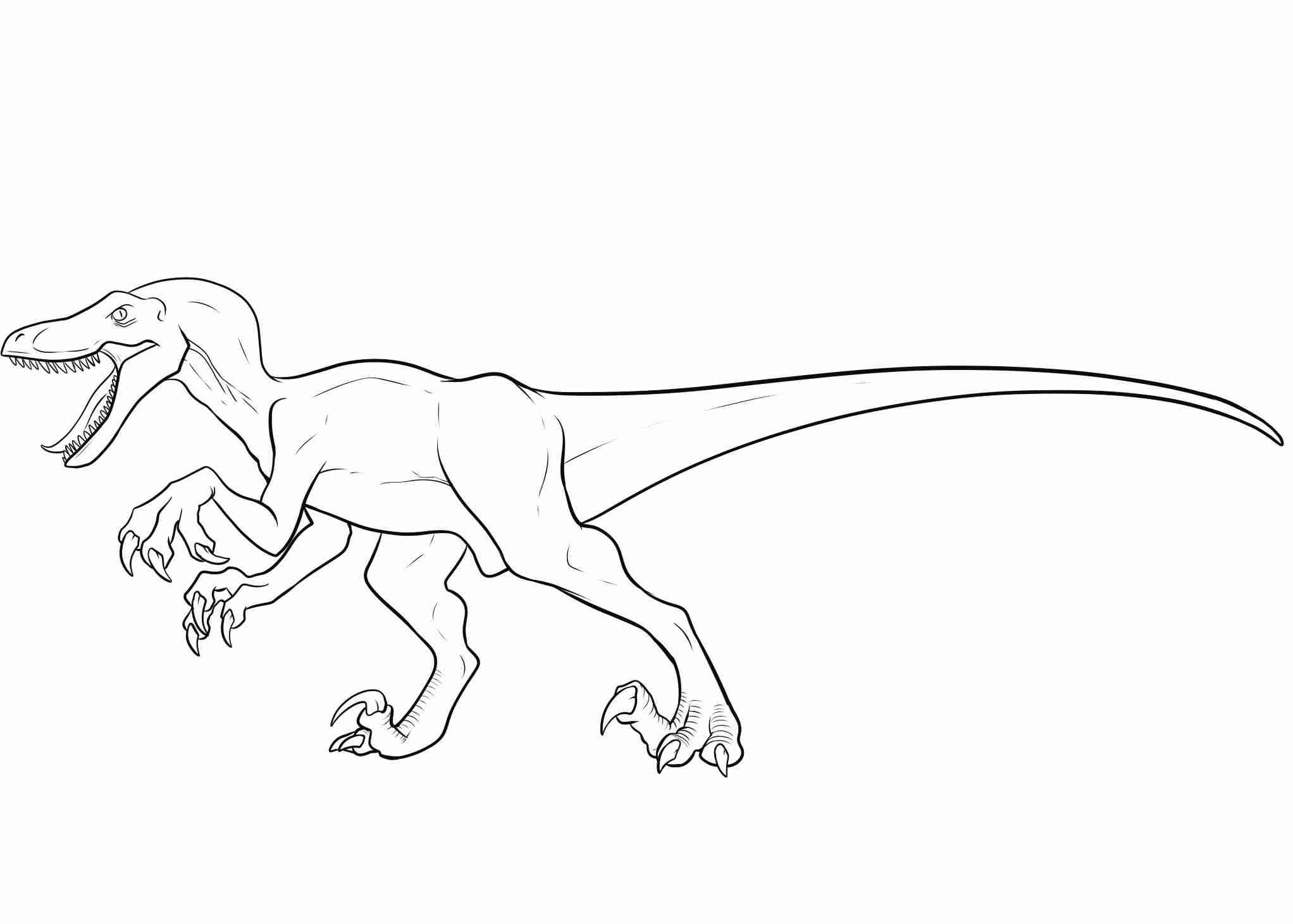 2044x1461 Velociraptor Coloring Page Beautiful Pages Beauteous Olegratiy