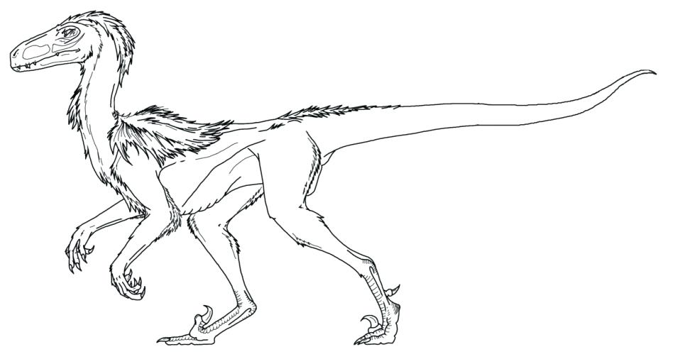 948x506 Velociraptor Coloring Page Pages World Raptor Blue Park Jurassic