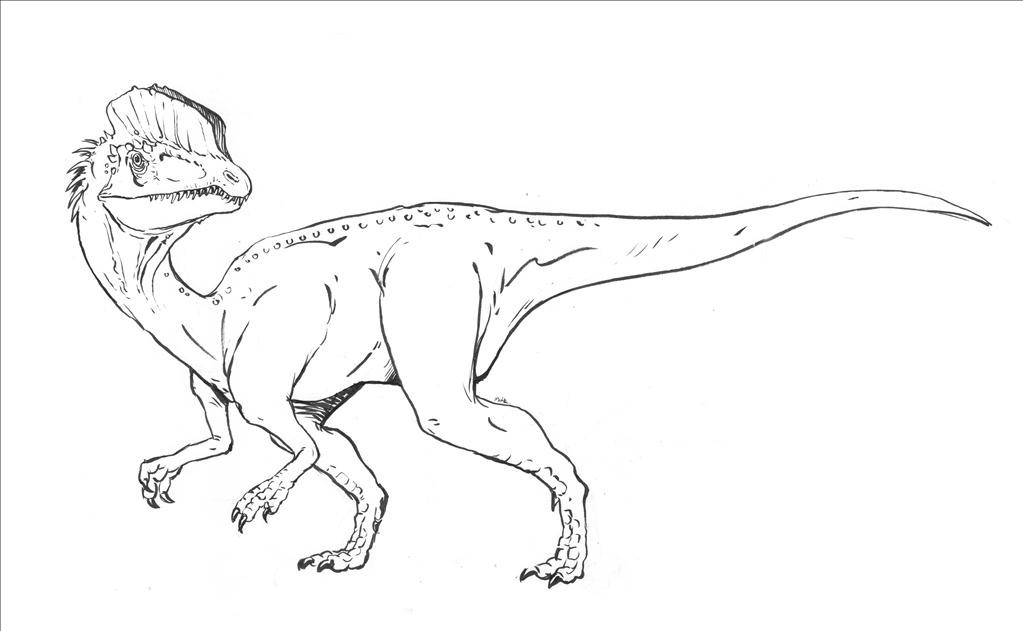 1023x631 Velociraptor Coloring Pages High Definition Intended