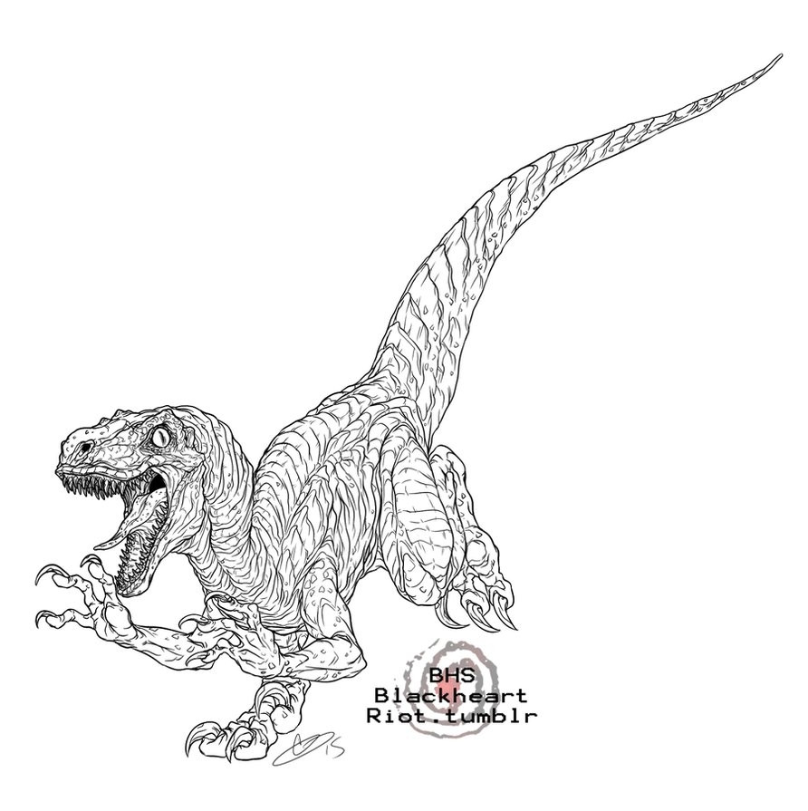 892x895 Jurassic Park Raptor Coloring Pages Collection Free Sheets Fine