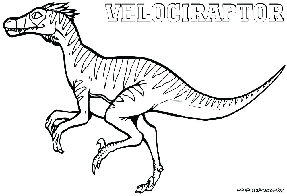 raptor blue coloring pages - photo#23