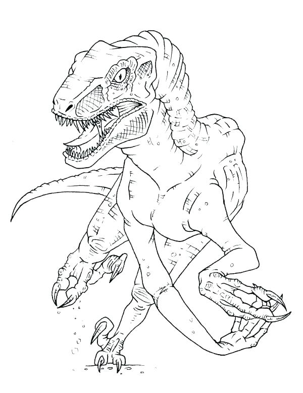 600x778 Velociraptor Coloring Page Pages World Raptor Blue Park Jurassic