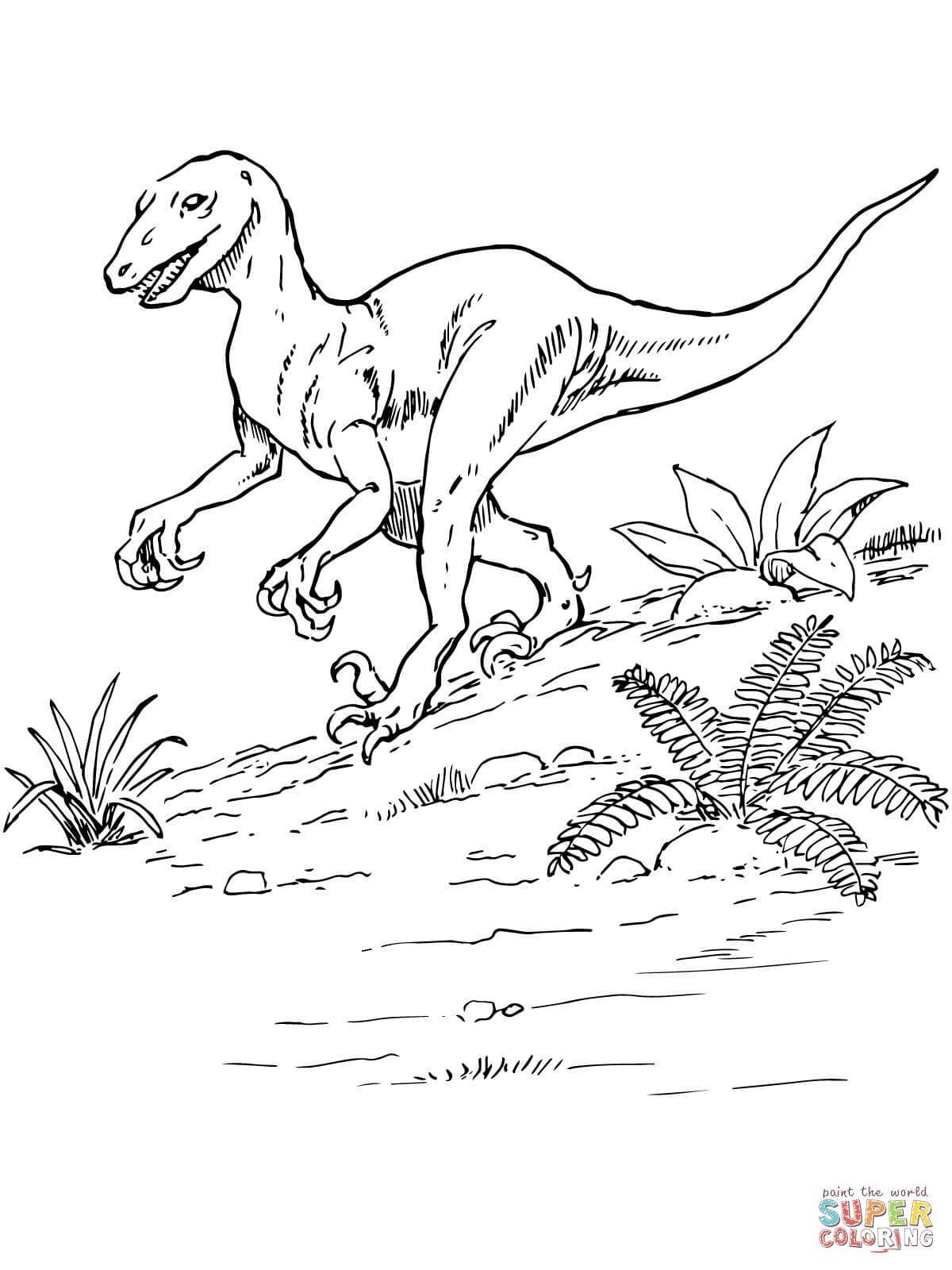 1200x1600 Jurassic Park Raptor Coloring Pages Fresh Printable Coloring Pages