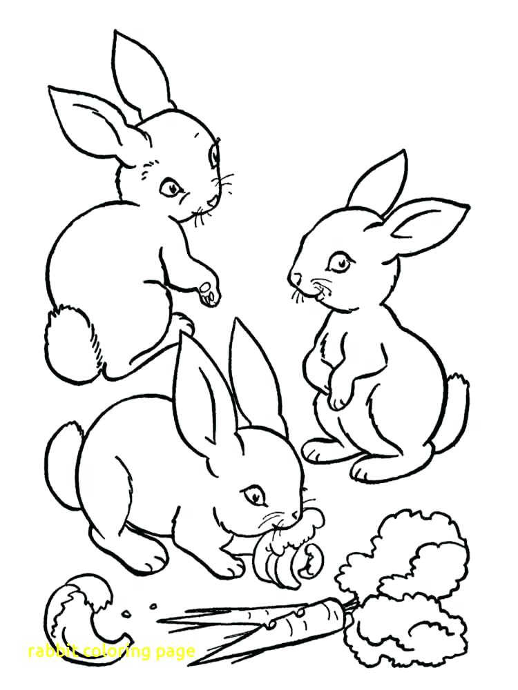 750x1000 Peter Rabbit Coloring Pages On Coloring Peter Velveteen Rabbit