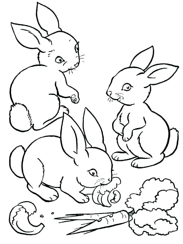 615x820 Velveteen Rabbit Coloring Pages