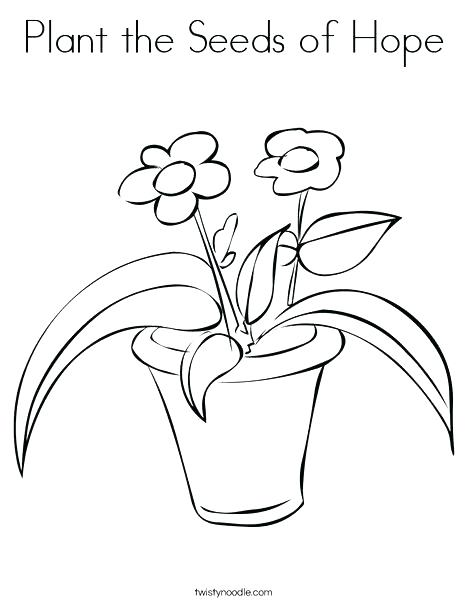 468x605 Venus Fly Trap Coloring Page Fly Trap Drawing To Draw A Flytrap