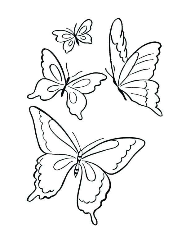 600x734 Venus Fly Trap Coloring Page Fly Trap In Black And White Royalty