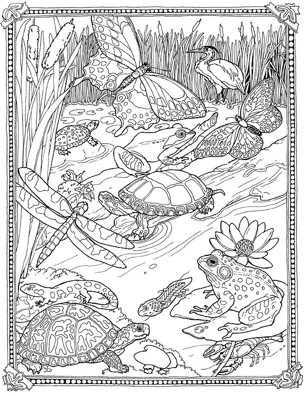 615x794 Superb Terrific Very Detailed Coloring Pages Image Kids Coloring
