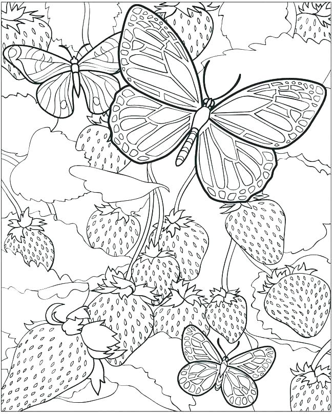 650x808 Inspirational Detailed Coloring Pages Printable For Free Older
