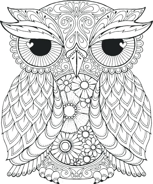 535x645 Cute Owl Coloring Pages To Print