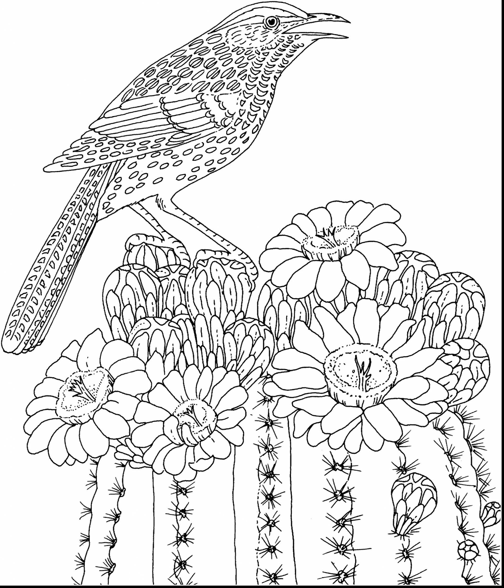 2102x2451 Hard Coloring Pages