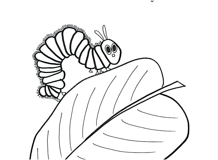 827x609 Hungry Caterpillar Coloring Pages Coloring Caterpillar Stylist
