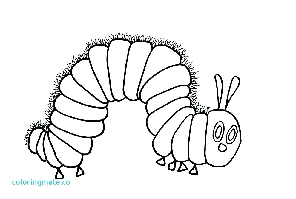 991x668 Hungry Caterpillar Coloring Pages The Very Hungry Caterpillar
