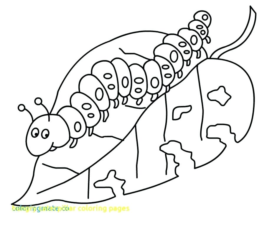 940x762 The Very Hungry Caterpillar Coloring Page Caterpillar Coloring
