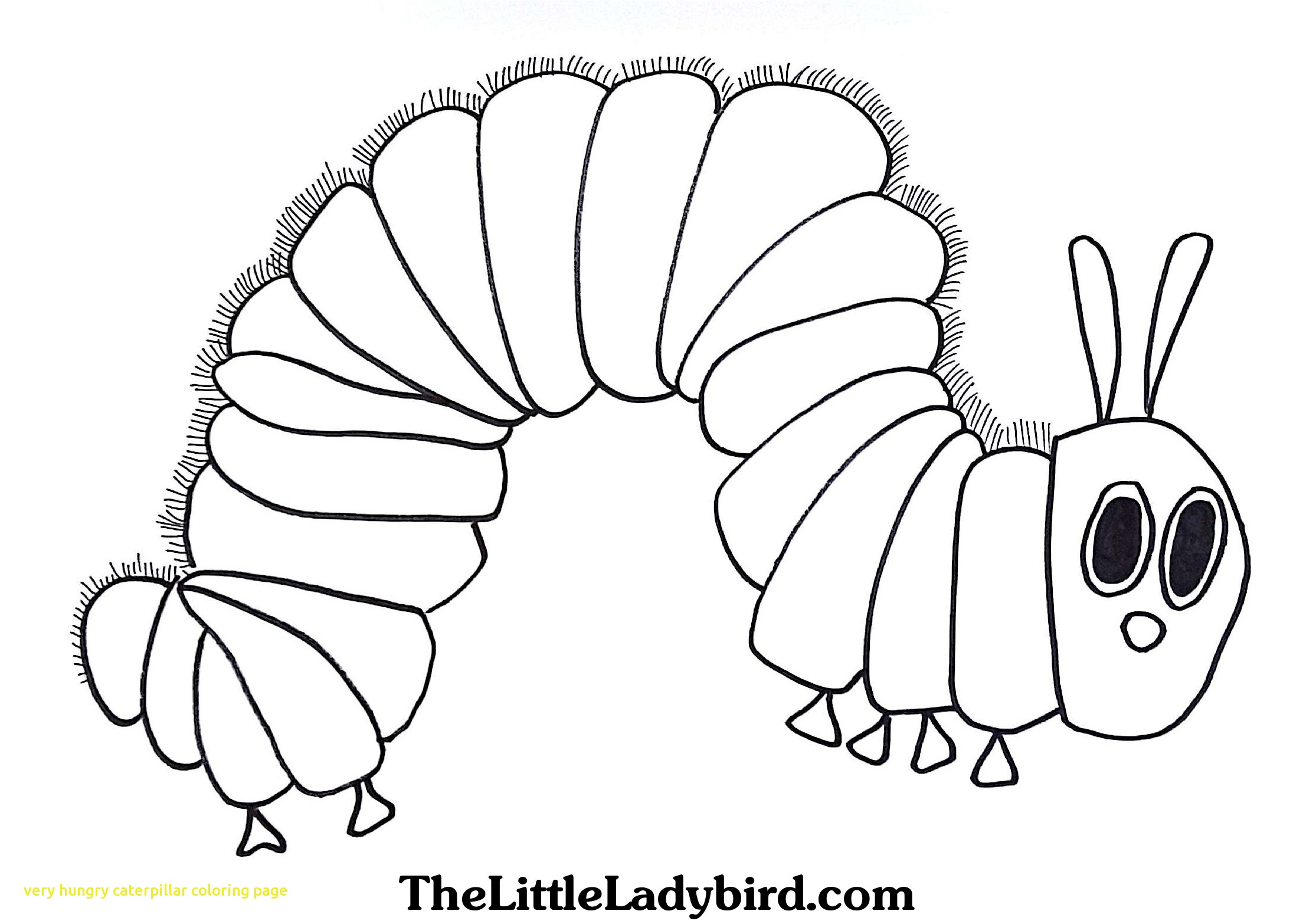 2230x1566 Very Hungry Caterpillar Coloring Page With Very Hungry Caterpillar